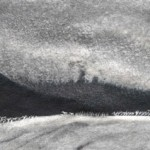 nocturn landscape black silver II